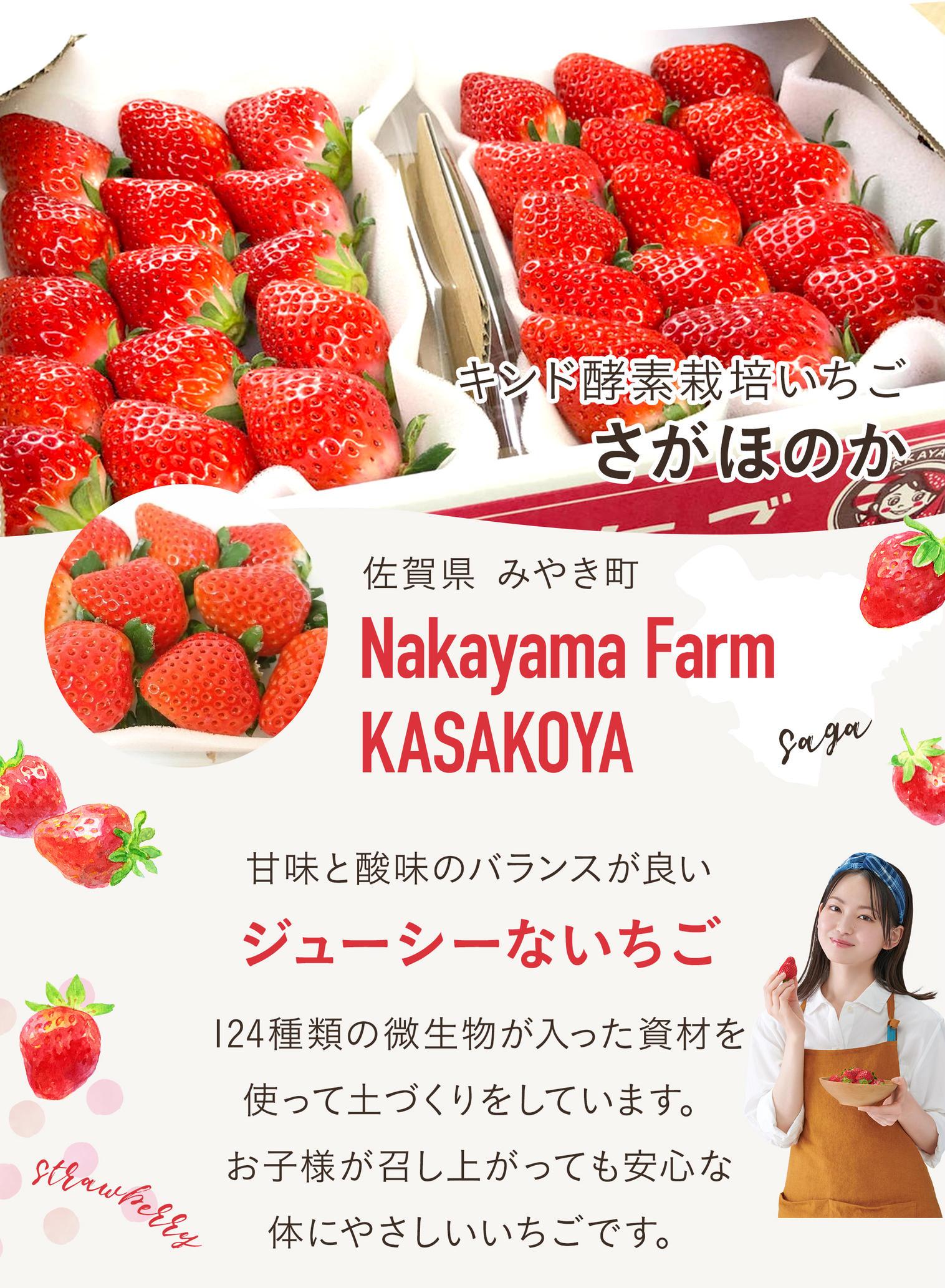 山田杏奈CMの産直通販アウルのあまーい酵素栽培いちごさがほのか。朝採れで新鮮だから美味しい