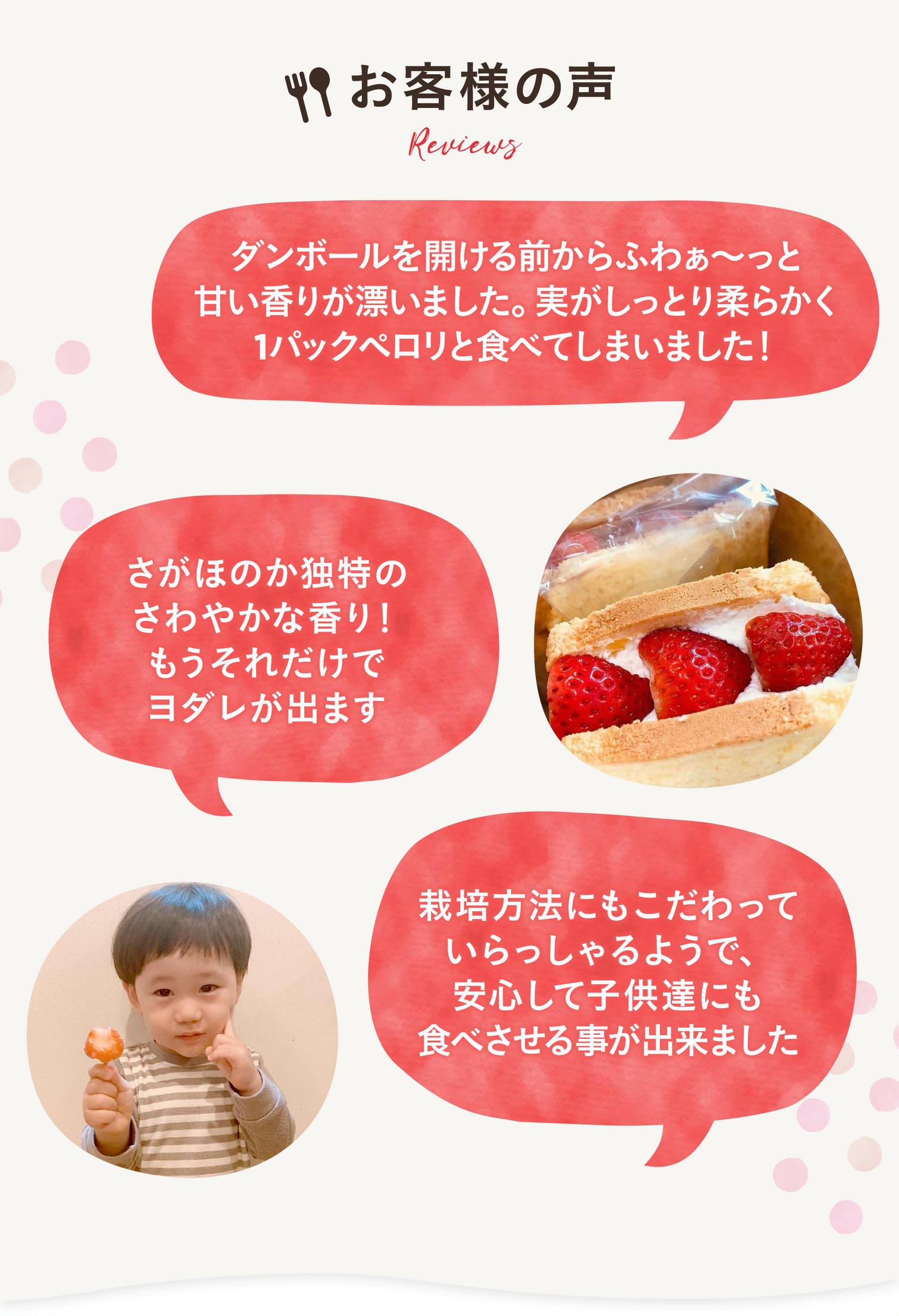 産直食材通販の産直アウルなら山田杏奈CMで話題の酵素栽培いちごさがほのかをお取り寄せ