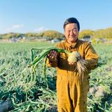 【7分つき】淡路島産新米ヒノヒカリ(5キロ) 5Kg 米/米通販