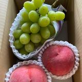 シャインマスカット 2kg 果物/ぶどう通販