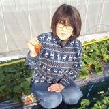 あま~い!秋とうもろこし【恵味ゴールド】 8~9本 約3kg 野菜/とうもろこし通販