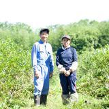 北海道十勝産冷凍カシス【サイズ混】(1kg) 1kg 果物/その他果物通販