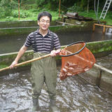 ニジマス(冷凍) 8~12匹 約1kg 内臓処理前の重量で1kg 魚介類/川魚通販