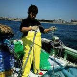 明石ダコ(小)約100g〜300g お得な1kgセットでお届け♪ 約100g〜300gのタコ1kgセット 魚介類/タコ通販