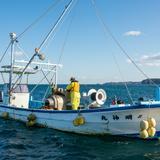 南三陸牡蠣漁師直送 生牡蠣 むき身300g×3パック 300g×3パック 魚介類/牡蠣通販