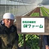 【有機・規格外が特価】有機なす1.5kg+オマケ付☆【限定品】 1.5kg 野菜/茄子通販