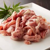 【もつ鍋もつ焼きに!】捌きたて!安曇野産地鶏ホルモン5種MIXセット(600g) 首皮・せせり(首肉)・軟骨付きはらみ(横隔膜)・さえずり(食道)・こぶくろ(そのう) 300 肉 通販