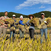 玄米3キロ、白米2キロ 5キロ ポカラカファーム
