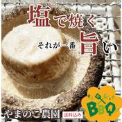 父の日に肉厚で大きな椎茸 1.2キロ クール便無料 1.2キロ 徳島県 通販