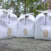 しろうま農場 【特栽米食べ比べセット】1kg×4種類 1kg×4種類 計4kg