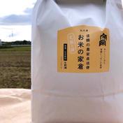 【新米】食卓の笑顔の源!ミルキークィーン4.5Kg白米(30合入) 4.5Kg白米 滋賀県 通販