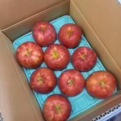 マルコウアップル サンジョナゴールド 約3kg