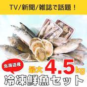 【訳あり】漁師応援、冷凍鮮魚セット(4~4.5kg/4~5魚種) 4~4.5kg 4~5魚種(内容はおまかせになります) アウルで地域の飲食店を盛り上げよう
