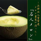 静岡クラウンメロン 『名人メロン』(山等級Lサイズ) 約1.4~1.5Kg 果物(メロン) 通販