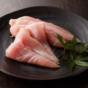 【捌きたて!】安曇野地鶏特大ささみ精肉6本(450~550g) 特大ささみ6本(450~550g) 肉 通販