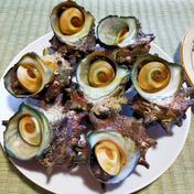 【敬老の日に!】天然!活き活きサザエさん! 1.5キロ 魚介類(サザエ) 通販