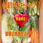のぐちファーム 2020ありがとう!完全お任せ野菜BOX(10品目程度)