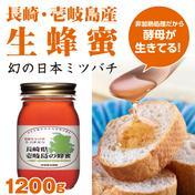 【壱岐島産】日本ミツバチのはちみつ 1200g 1200g はちみつ 通販