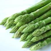 【Lサイズ2kg】小林農園の朝採りアスパラガス⭐️お中元・夏ギフト対応⭐️ 2kg 野菜(アスパラガス) 通販