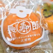 贈答用L〜2L 24〜26玉入り 古い樹から採れた長生き次郎柿『長寿郎』 6kg 果物(柿) 通販