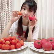 【送料無料】訳あり島根県奥出雲高原トマトミディ2キロ 野菜(トマト) 通販