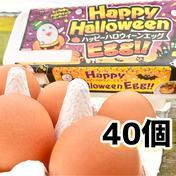 【ハロウィーン・赤卵40個】納豆菌の仲間、『枯草菌』で育てた鶏のたまご40個 40個 果物や野菜などのお取り寄せ宅配食材通販産地直送アウル