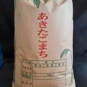 【大特価】【送料割】あきたこまち精米10kg令和2年産 10kg 秋田県 通販