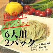 あさひめ生うどん✨『6人前2パック』(ジェノベソース付き) 430×2パック ジェノベソース1本 加工品(麺類) 通販