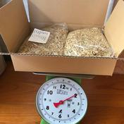 金の大麦 殻つき 1.8kg 麦茶用 1.8kg お茶(その他のお茶) 通販