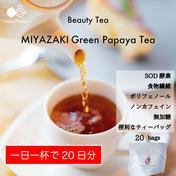 〜芳醇な甘い香りに癒されて〜MIYAZAKI Green Papaya Tea(ティーバッグ20個入り)【送料最安】 1.5g × 20個 お茶(その他のお茶) 通販