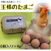 平飼い名古屋コーチン【王様のたまご】6個入り紙パック×4p 24個(1個当たり58~61g) 卵(鶏卵) 通販