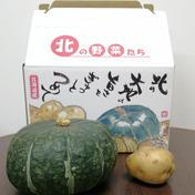 じゃがいも(きたあかり)3kgかぼちゃ1個(蔵の匠) 約5kg 北海道 通販
