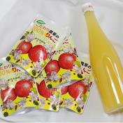 数量限定 100%りんごジュース2種類飲み比べセット サンふじジュース180ml 10ケ、トキジュース720ml1本 飲料(ジュース) 通販