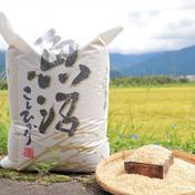 10月発送】 令和3年産南魚沼コシヒカリ10㎏(玄米) 【新米予約 10kg 米(玄米) 通販