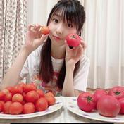 【送料無料】訳あり島根県奥出雲高原トマト中玉2キロ 2 野菜(トマト) 通販