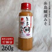 (福岡県)糸島鯛液みそ【3本】簡単お味噌汁の素『食品添加物無添加』 260g×3本 調味料 通販