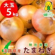 あさひ・サン・ファーム 【大玉】淡路島産たまねぎ 【5kg】 兵庫県認証食品 レシピ付き! 5kg