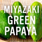 宮崎青パパイア(1kg)~MIYAZAKI Green Papaya~ 1kg 果物や野菜などのお取り寄せ宅配食材通販産地直送アウル
