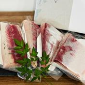 百年漁師の鰤とあおさ 詰合せ 1セット(刺身サク4パック、あおさのり1袋) 鹿児島県 通販