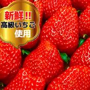 《送料無料❗️》【❄️冷凍いちご2kg(1kg×2袋)】そのまま食べれる新鮮バラ冷凍✨【贅沢いちごを瞬間冷凍🍓】 2kg 奈良県 通販