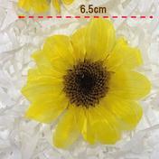 【プリザーブド】今村園芸/ひまわり(サフランイエロー) M 2輪 その他(花・植物) 通販