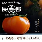 糖度16度保証 お歳暮用2L6玉入り 古い樹から採れた長生き次郎柿『長寿郎』 1.5kg 果物(柿) 通販