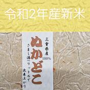 農家が作る新米ミルキークイーンの「ぬか床」 ぬか床940㌘ 三重県 通販