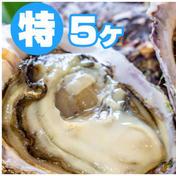 徳島県産 天然 岩牡蠣 450g~600g 徳島県 通販
