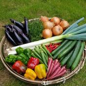 さくま農園「おまかせお野菜セット」 約3.0~5.0㎏ さくま農園