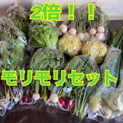 【常温タイプ用】のぐちファーム安曇野☆ファミリーWaiWai野菜ボックス のぐちファーム