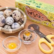 浜名湖ファーム 濃厚なのに後味すっきり!!うずらの生卵40個 うずらの生卵40個