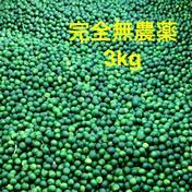 すだち 完全無農薬 3kg 3kg 果物 通販