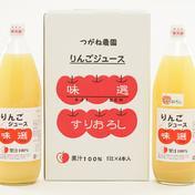 【朝が楽しみ!】2本入信州産りんごジュース味選 1L2本入:ストレート1、すりおろし1 飲料(ジュース) 通販