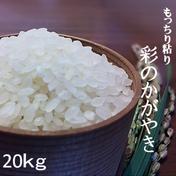 一等米!新米 彩のかがやき20kg(白米の場合18kg) 玄米20kg、白米、分つき米18kg、無洗米17kg 果物や野菜などのお取り寄せ宅配食材通販産地直送アウル